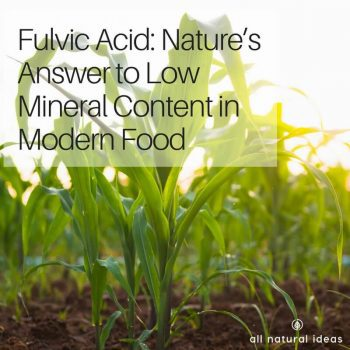 Fulvic Acid Benefits: Why take this mineral supplement?