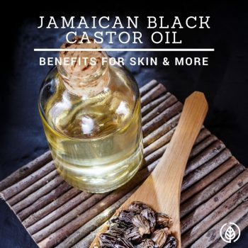 Jamaican Black Castor Oil: Is it Better for Hair & Skin?