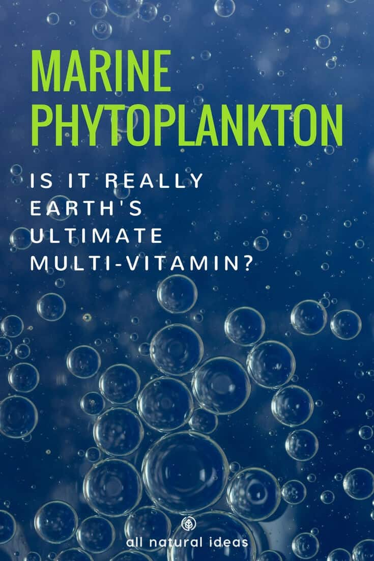 Marine phytoplankton is a nutrient-rich supplement containing a vast array of nutrition. But is it safe to take, considering the state of the Earth's polluted waters?