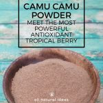Camu Camu powder just might be the one superfood supplement you should have in your pantry. Its super-high vitamin C content and antioxidants may help prevent inflammation and disease.