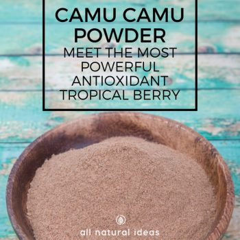 Camu Camu Powder: A Powerful Antioxidant Berry