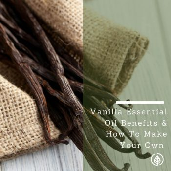 Vanilla Essential Oil Uses & Health Benefits