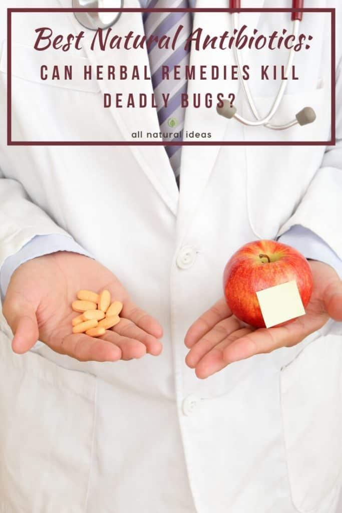 best natural antibiotics
