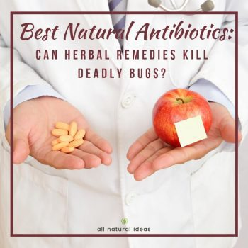 Having nightmares about superbugs? No, not really big insects but infections that antibiotics can't kill? Then take a look at some of the best natural antibiotics.