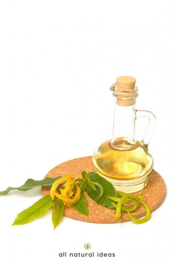 Ylang ylang oil benefits are numerous, including helping you relax and reduce stress, and possibly even boosting your sex drive.