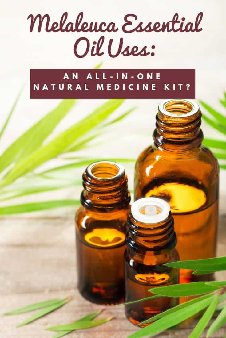 Got an infection or a cold? How about dandruff or a UTI? Melaleuca essential oil uses include treating these ailments and several others. But is there research to prove it works?