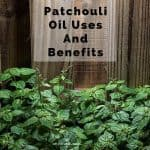 Patchouli oil is perhaps most well known for its earthy, natural fragrance. In other words, hippies love it. But beyond the Mother Nature scent, what are other patchouli oil uses and benefits?