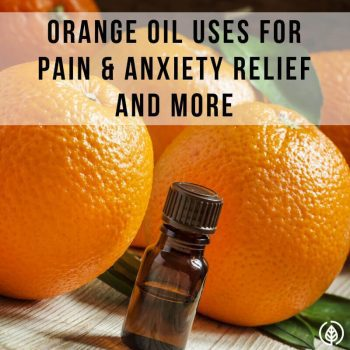 If you're new to using essential oils, one of the best all-around ones you should have is orange oil. Orange oil uses include helping relieve anxiety, treating skin infections and killing termites. Discover more about this dynamic botanic....