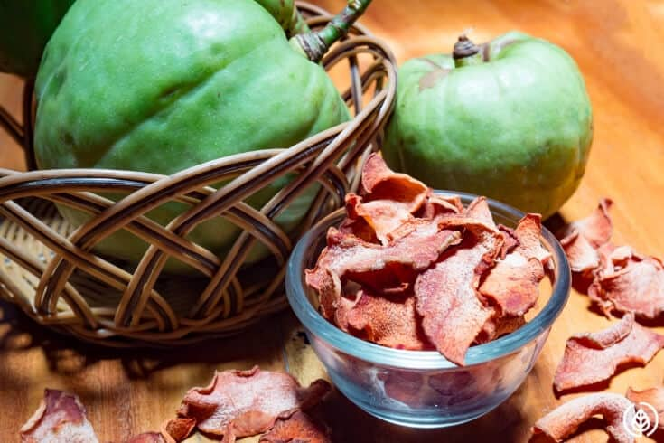 garcinia cambogia weight loss supplement
