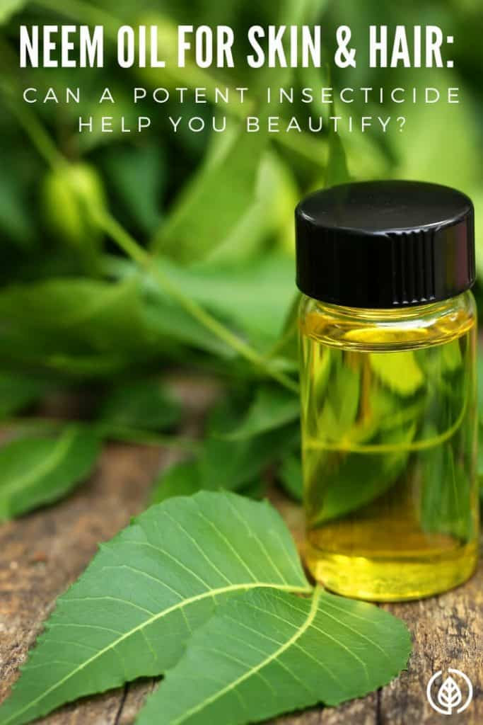 Considering how powerful the compounds in the neem plant are, why is using neem oil for skin and hair gaining in popularity? After all, neem is used as an insecticide. If it can kill critters, wouldn't rubbing it in your hair and skin cause problems? Discover more about this remarkable essential oil.