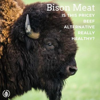 Bison Meat, healthy