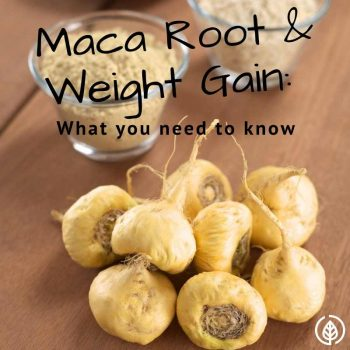 Maca Root and Weight Gain