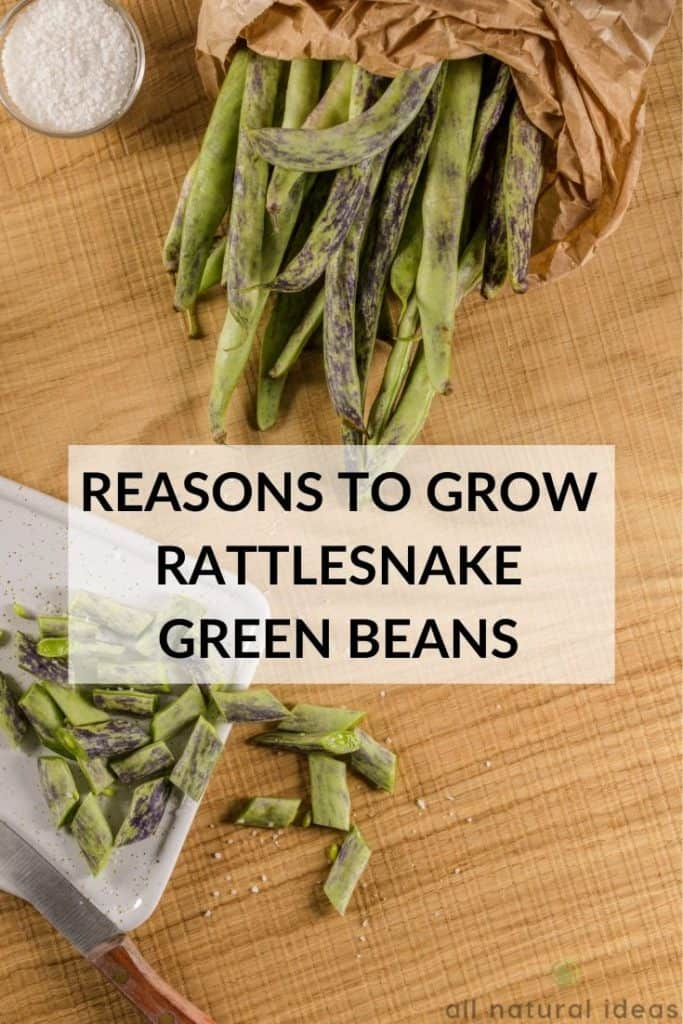 reasons to grow rattlesnake green beans